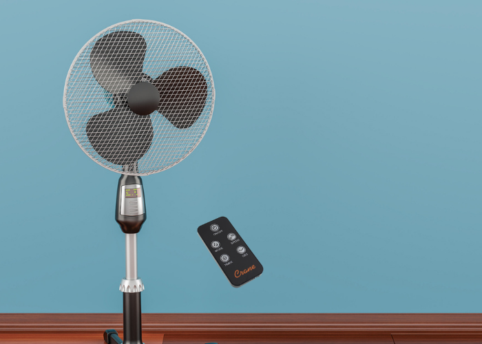 best pedestal fan with remote