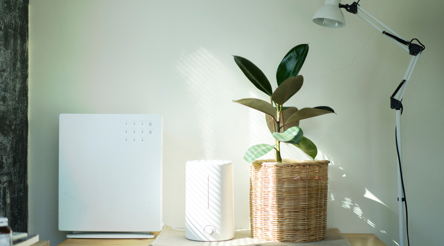 smart humidifier and air purifier