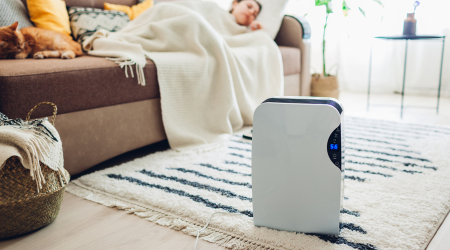 best dehumidifier for large room