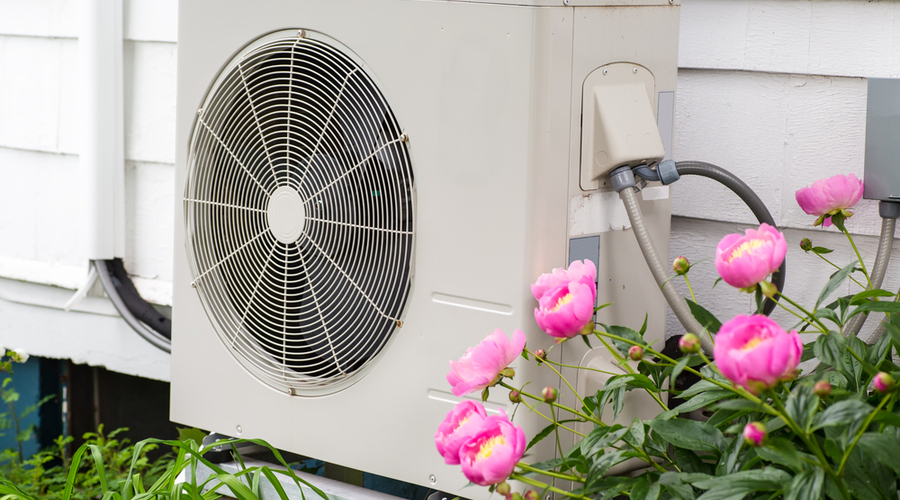 a flowery home with the best mini split heat pump for cold weather
