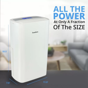 best air purifier and dehumidifier all in one