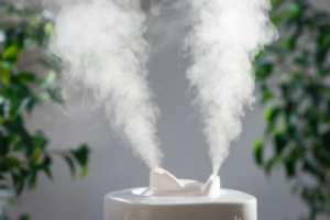 best humidifiers without filters in work