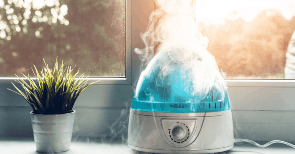 The best easy to clean humidifier in a balcony.